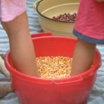 kukorica morzsolás